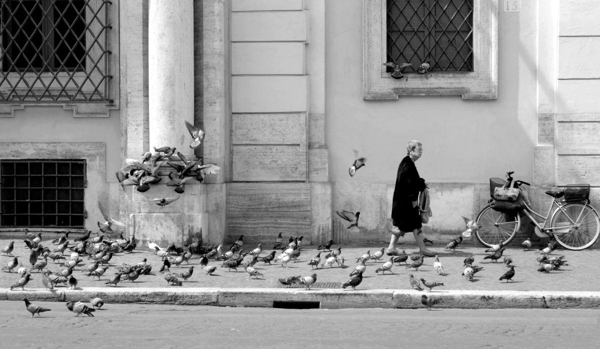 2016_04_Les oiseaux 2 Justine
