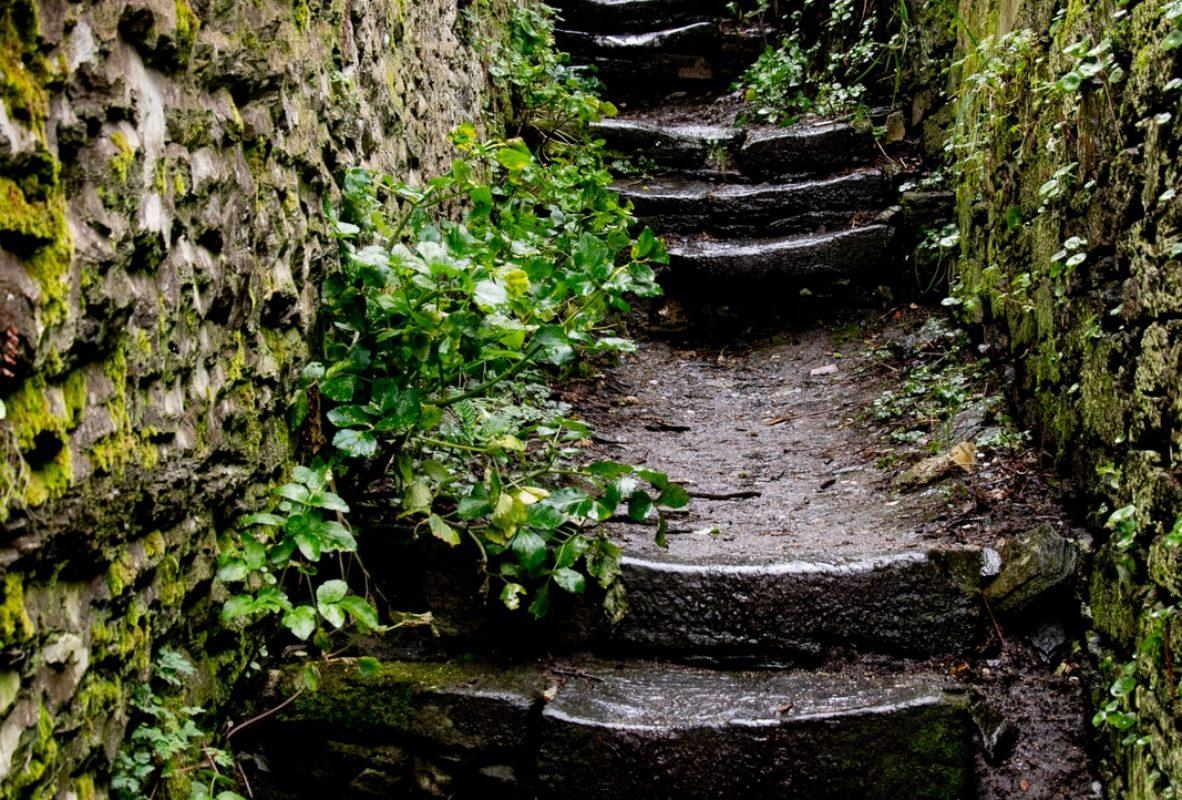 2021-02-Escaliers-03-JC